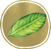 Ein grünes Blatt in goldenem Kreis